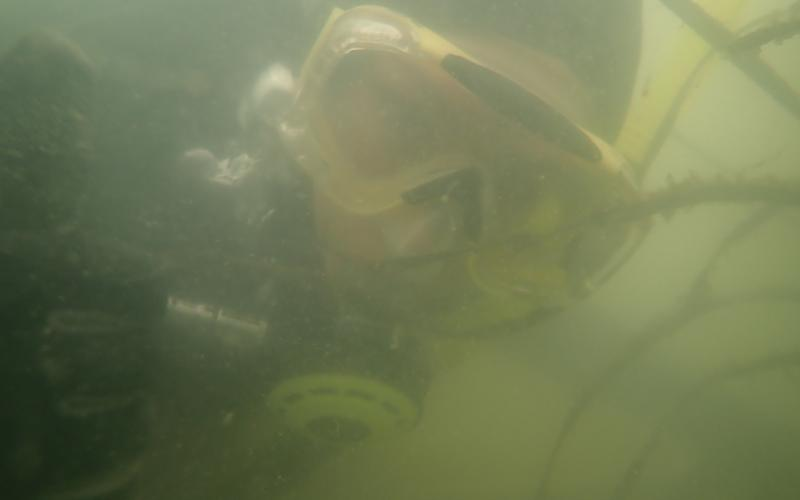Diver at the San Francisco Bay MarineGEO site