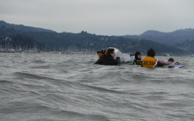 SFSU researchers in water at the San Francisco Bay MarineGEO site